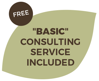 Free Basic consulting service included