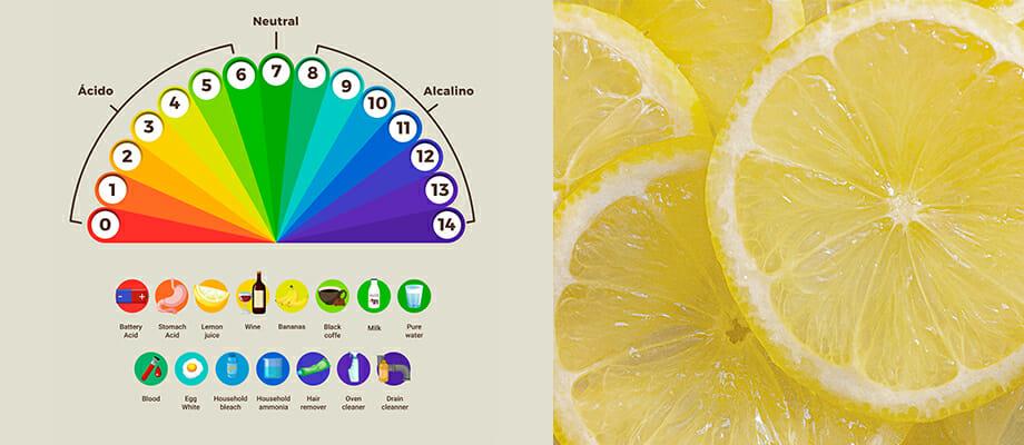 Effets du pH et de l'acidité sur les conserves et les plats cuisinés